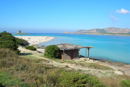 Pelosa: one of the incredible beaches in Sardinia